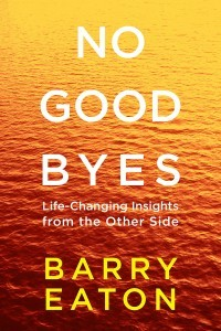 no-goodbyes US cover -Barry-Eaton